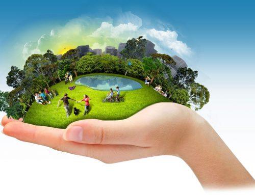 Adote a sustentabilidade na condução de seu negócio